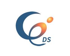 株式会社デジタルソリューション